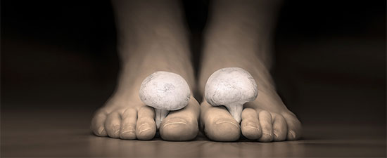 Feel Like You're Growing Mushrooms on Your Toes? It's Time to Learn the Signs and Causes of Toenail Fungus!