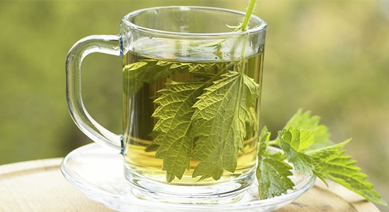 Nettle Tea and gout, University Foot and Ankle Institute