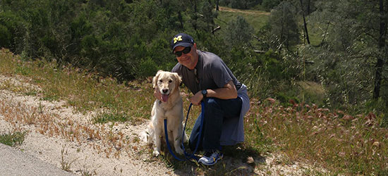 Avoiding Foot and Ankle Overuse Injuries While Dog Walking During a Pandemic